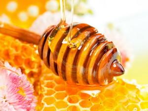 Natural honey-1024x768